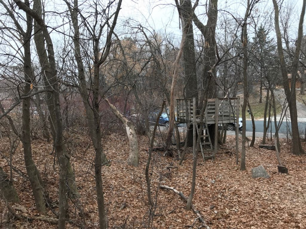 Garlough's Chipmunk Park with a tree fort