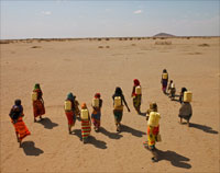 Women in Kenya walking to collect water